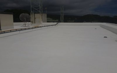 What's New In Roofing? Rubberized Roof Systems
